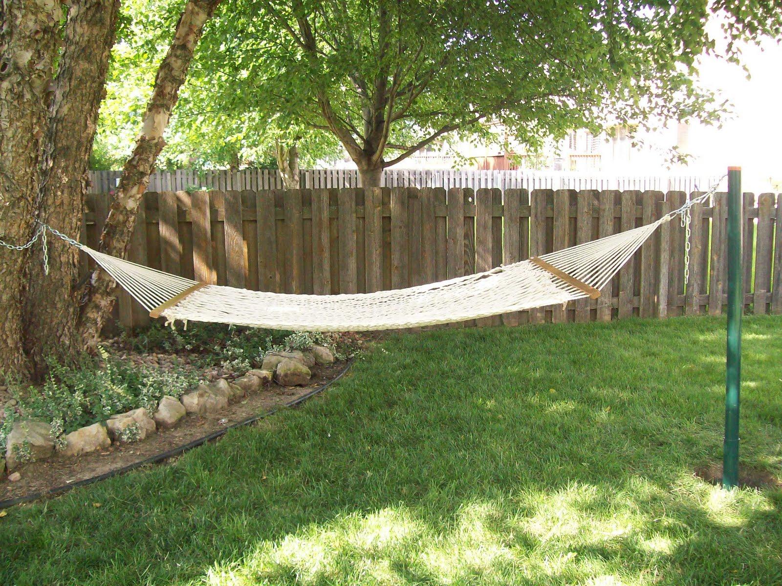 Backyard Hammock Setup :  one giant tree in my backyard, how can i set up a hammock? (srs) reps