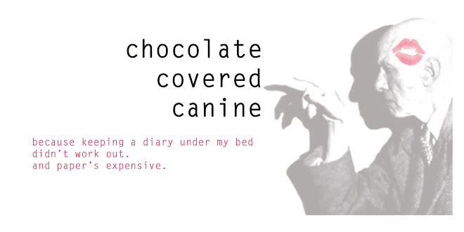 chocolate covered canine