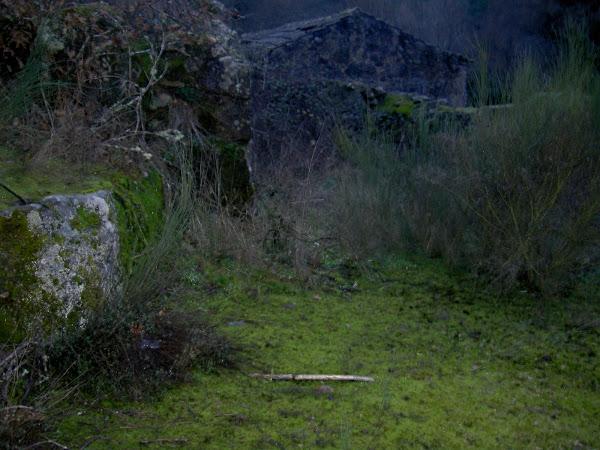Ruinas de antigos Moinhos e Lagares de Azeite