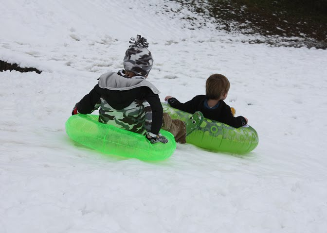 Brothers Sledding at Grapevine Springs Park