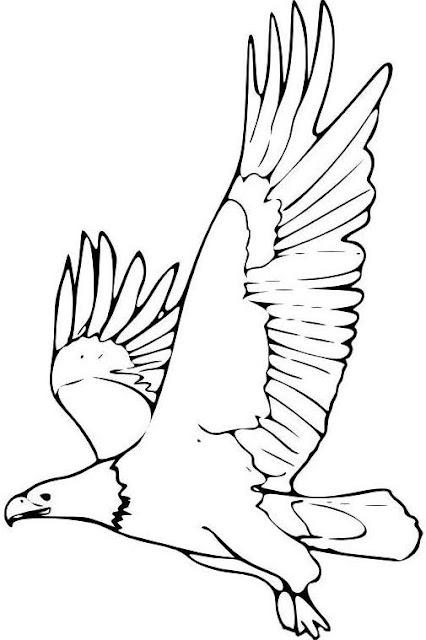 Dibujo de un águila volando para colorear o pintar