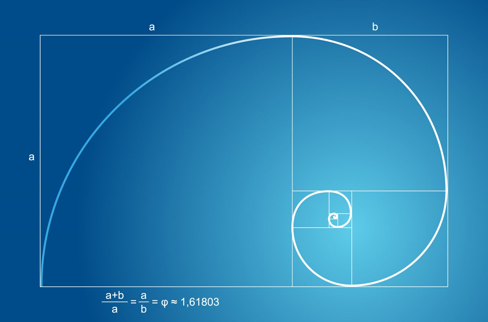 bondispace golden ratios