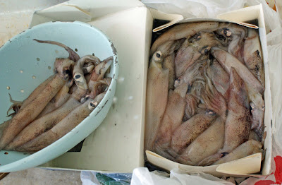 Squid+ +thawed Calamari: Grilled, then Fried