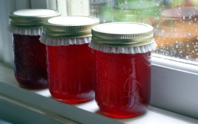 Nanking+cherry+jelly Nanking Cherry Jelly