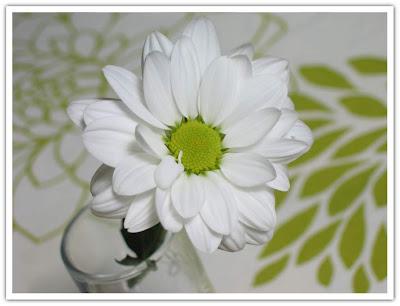 Finfin blomma