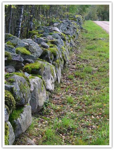 Mossig stenmur