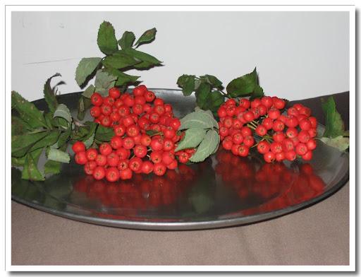 Rönnbärsklasar