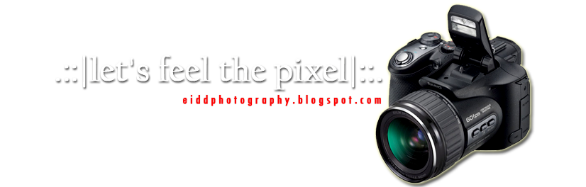 .:: let's feel the pixel ::.