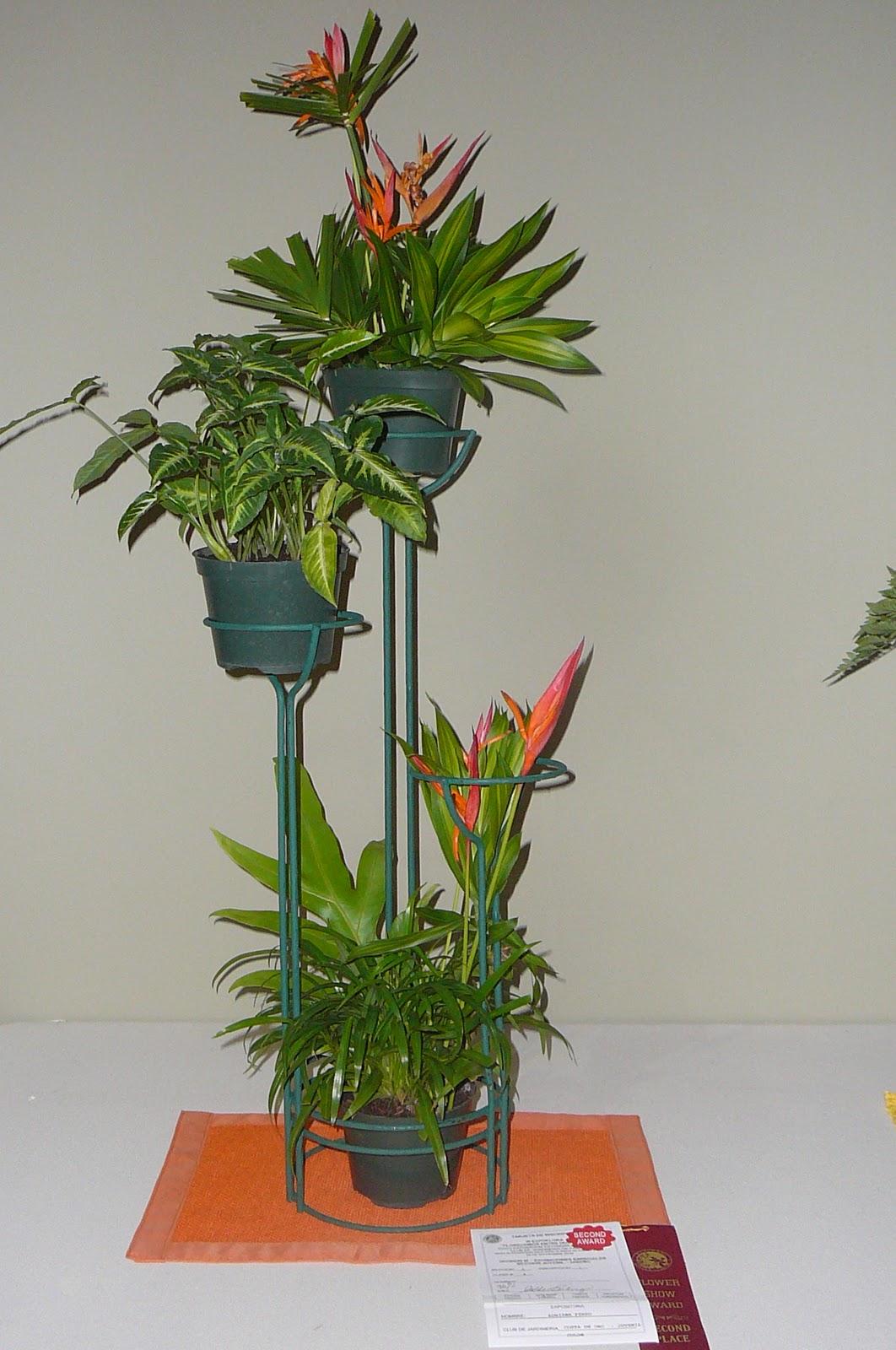 Arreglos florales creativos seccion juvenil pot - Arreglos florales creativos ...