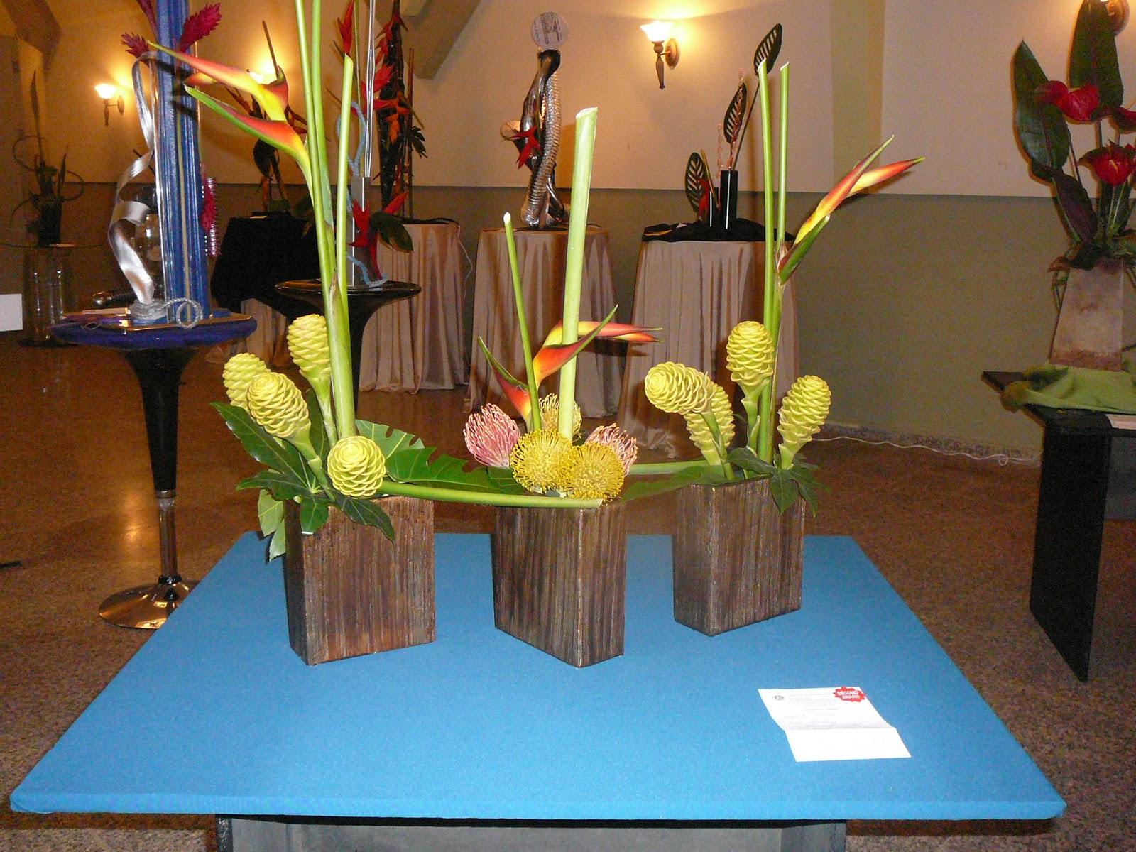 Arreglos florales creativos arreglos creativos sinergetico gatun - Arreglos florales creativos ...