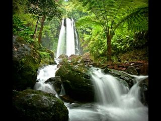 Air Terjun Jumog: Membawa Anda Berwisata Alam ke Masa Lampau