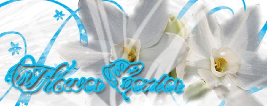 FlowerCenter