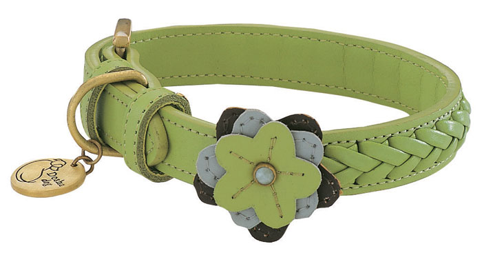 Lucy, Duke & Their Humans: About Lucy's New Collar....