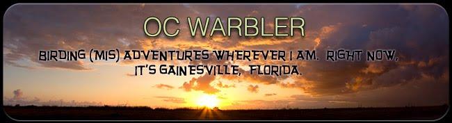 OC Warbler