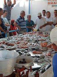 Alaçati fish auction, Turkey