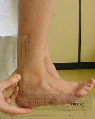 Dorsiflexão da Articulação do Tornozelo