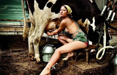 What Are You Willing To Milk?