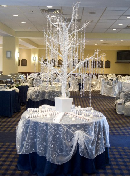 White wedding decor, White wedding decor pictures