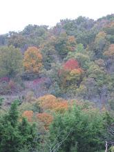 Fall Foilage in Branson,MO