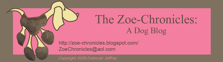 The Zoe-Chronicles:  A Dog Blog