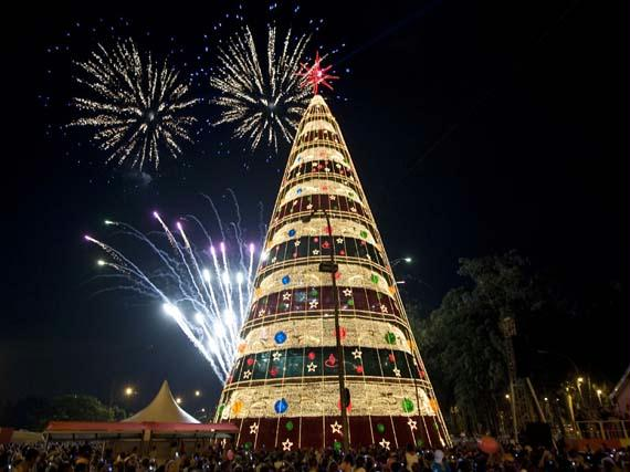 ***  Àrvore de Natal do Ibirapuera  ***