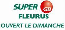 Super GB Partner