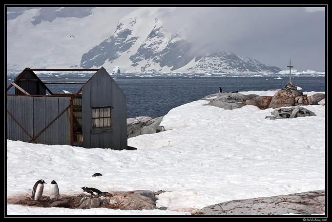 7864572 - Antarctica
