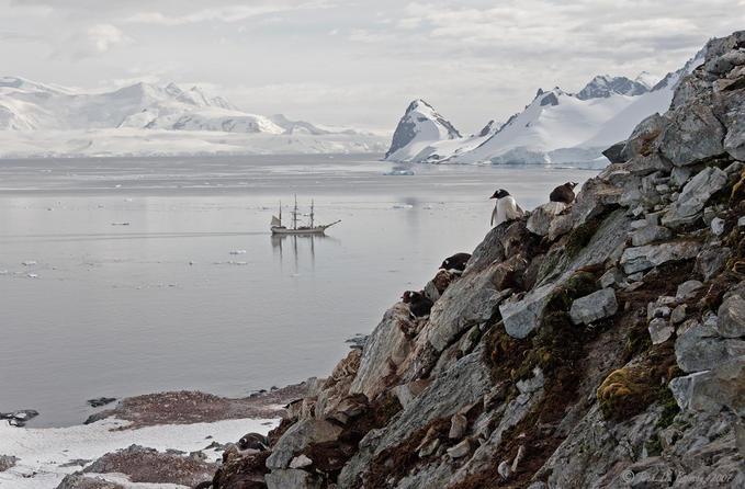 6779762 - Antarctica