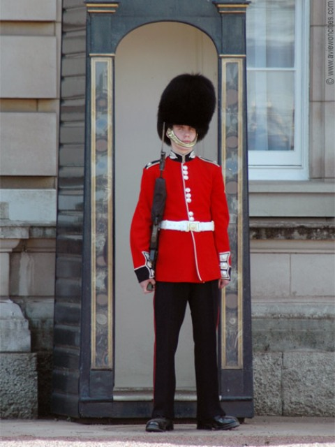 buckingham palace guards8 - Buckingham Palace Guards