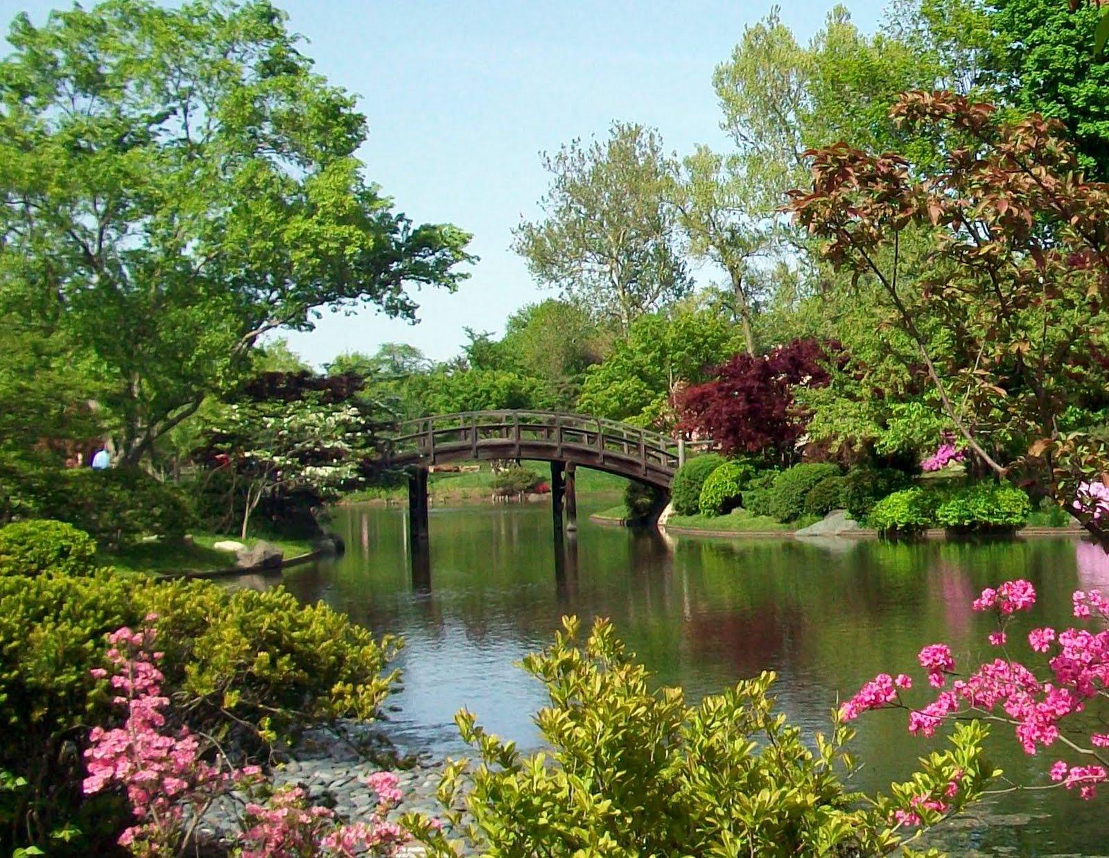 beautiful spring flower gardens hot girls wallpaper