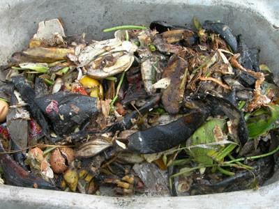 Sampah organik adalah sampah yang berasal dari makhluk hidup dapat