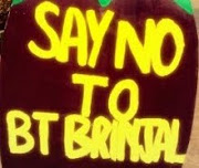 SAY NO TO BT BRINJAL