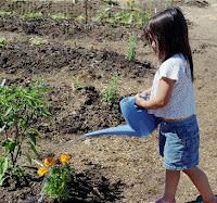 Plant Nurturing
