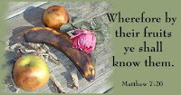 Know by Fruit