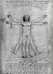 """Homem Vitruviano"", de Leonardo Da Vinci"