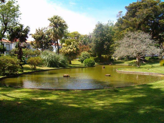 Paisagismo e jardinagem for Paisagismo e jardinagem
