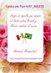 Amigo es aquél que supera el límite entre Brazil y México