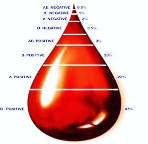 soorten bloed
