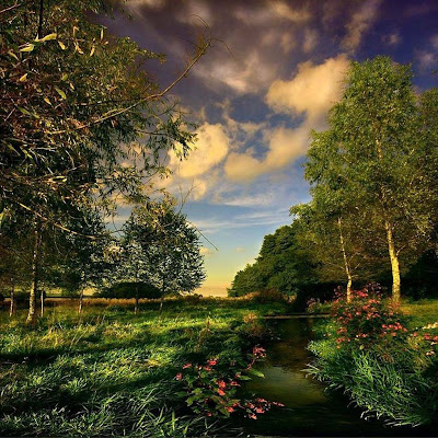3d nature wallpaper nature wallpaper. hot nature wallpaper 3d.