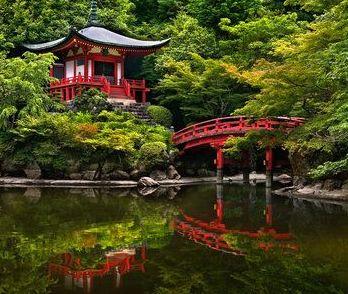 Zen Y Arte Casa Tradicional Japonesa