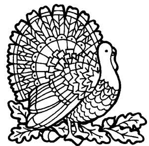 Find A Free Intricate Turkey Coloring Page Printable At News World 1