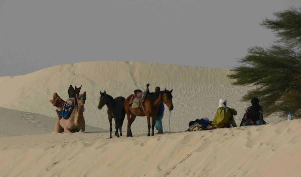 Festival au Desert, Essakane Mali