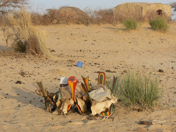 Camel Saddles