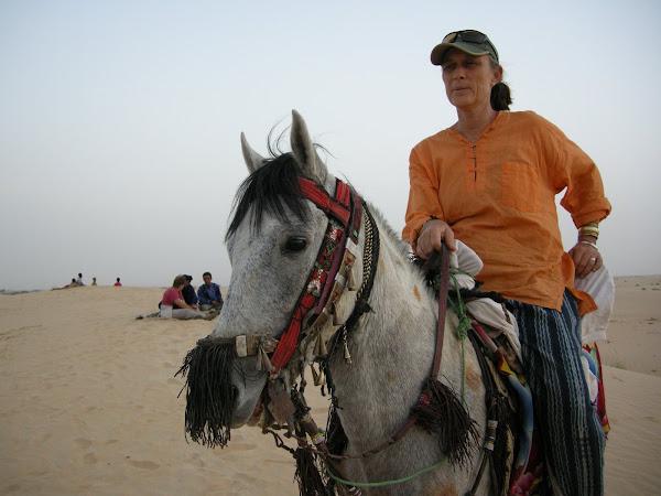 Riding Oumar's Stallion