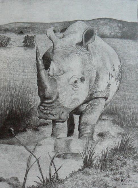 Pencil Rhino