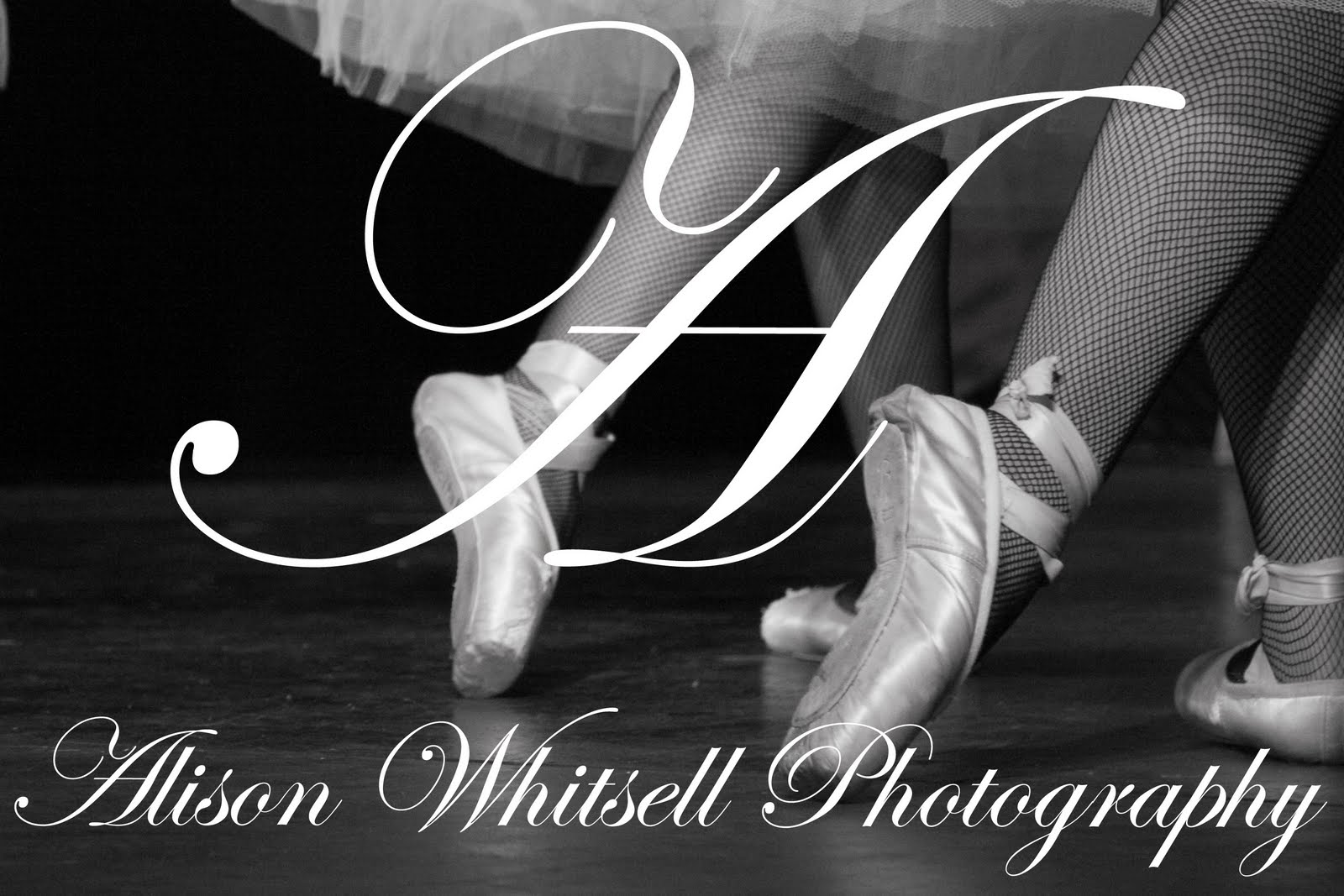 Alison Whitsell Photography