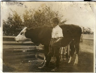 Cecil Zeno Holt Aug 1913 with Calf
