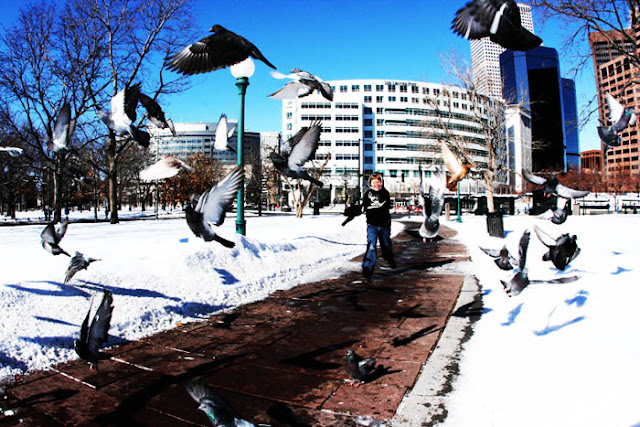 A kid running through a flock of flying pigeons at the State Capitol building in Denver.