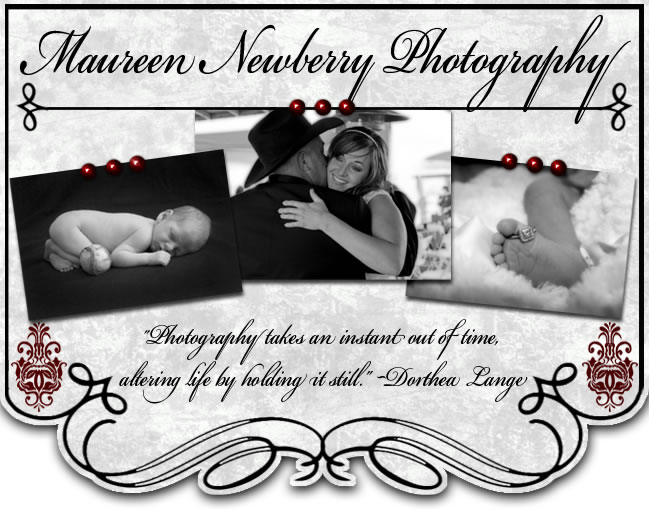 Maureen Newberry Photography