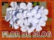 Este blog tiene el premio Flor de Blog